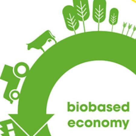 Jan 2018 –Bio-based Europe: Defining The Roadmap