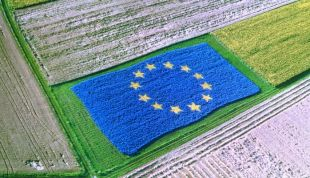 Feb 2018 – Share Your View For A Protein 2030 Plan For EU Agriculture: 22 March Bridge2Food Will Give Input For Stakeholder Survey